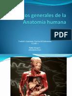 Conceptos generales de la Anatomía humana