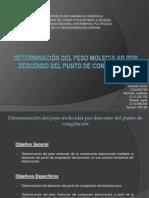 Determinación del peso molecular por descenso listo.pptx