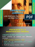 LOS PERFILES PSICOLOGICOS EN LA PRÁCTICA JURIDICA