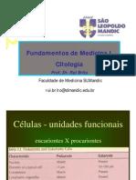 Aula de Organelas - Citoplasma