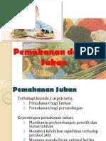 Pemakanan dalam Sukan