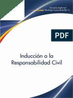 Inducion Al Responsabilidad Civil