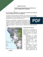 Proyecto Piloto.doc