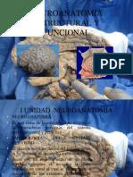 1 Def. de Neuro y Embriologia Del s.n.