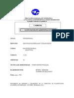 10 Revisado Prog. Macro Eco No Mia Electiva Corregido