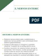 84139855 Sistemul Nervos Enteric