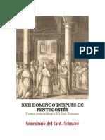 XXII DOMINGO DESPUÉS DE PENTECOSTÉS. Card. Schuster