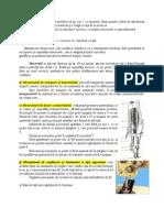 149634981-Croire-7.pdf