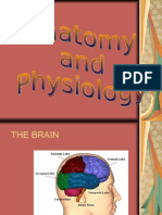 Anatomy and Physiology Tetanus Final