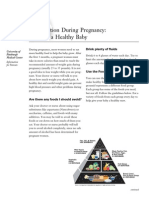 04 PFE Diet and Pregnancy