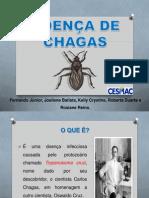 DOENÇA DE CHAGAS slide