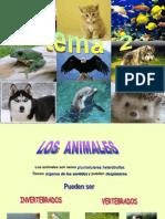 LOS ANIMALES 5ºB