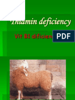 Thiamin Deficiency