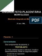Aula 3  Unidade feto-placentária (morfologia e fisiologia) (handouts)