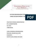 Cultura Organizacional Plaza Vea Comas