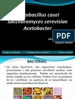 lactobacilos, lactobacter, saccharomyce
