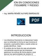 Incertidumbre y Riesgo Set 2013