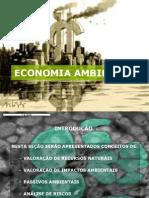 ECONOMIA AMBIENTAL - MODULO DO CURSO DE PERICIA