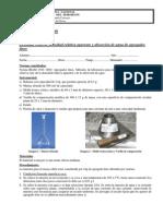 Práctico_-_Densidad_y_absorción_AF_-_2009