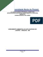 Monografia Sandro Final