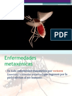 ES Metaxenicas CPAIS