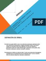 Árboles_R0A_4y20