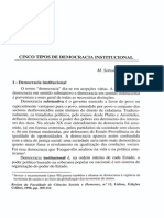 Cinco Tipos de Democracia Institucional