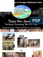 Kruger Telaga Biru Presentation