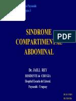 sindrome_compartimentalpy2006