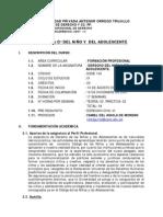 Sylbus de Derecho del Ni+¦o-UPAO