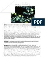 phyotoplankton lab write up