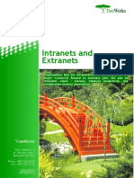 Intranets and Extranets (TreeWorks white paper)