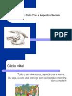 1228597121_velhice_-_ciclo_vital (1)