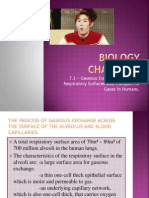Biology Chapter 7