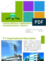 CMZ ORGANIZATIONAL PROFILE