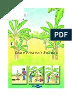 Como Produzir Banana