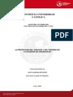 Almeida Briceno Jose Proteccion Conyuge