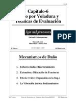 06_Capitulo_DañoxVol&Eval_Pierina_CScherpenisse_Oct2007