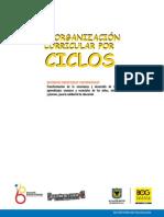 Cartilla Reorganizacion Curricular Por Ciclos 2da Edicion