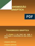 Sistema Nervoso - Transmissão Sinaptica