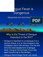 Dengue Fever is Dangerous v11