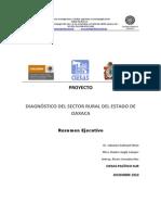 Res Diagnc3b3stico Sector Rural de Oaxaca