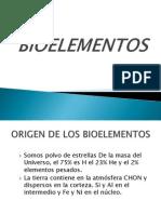 BIOELEMENTOS (1)