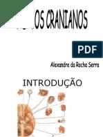 006 - N.cranianos 1