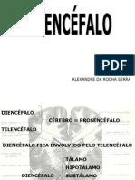 013 - Diencéfalo 1