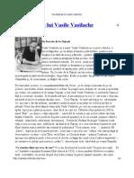 Paradigmele Lui Vasile Vasilache