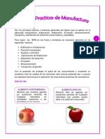 Manual de Buenas Practicas de Manufactura en Frutas y Hortalizas2
