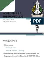 Homeostasis & thermoregulasi by. Enggie corvi bahari