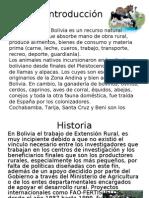 iMP.Extensión Pecuaria en Boliviaffff