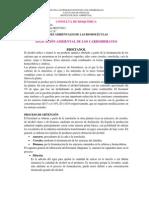 APLICACIÓN AMBIENTAL DE LOS CARBOHIDRATOS